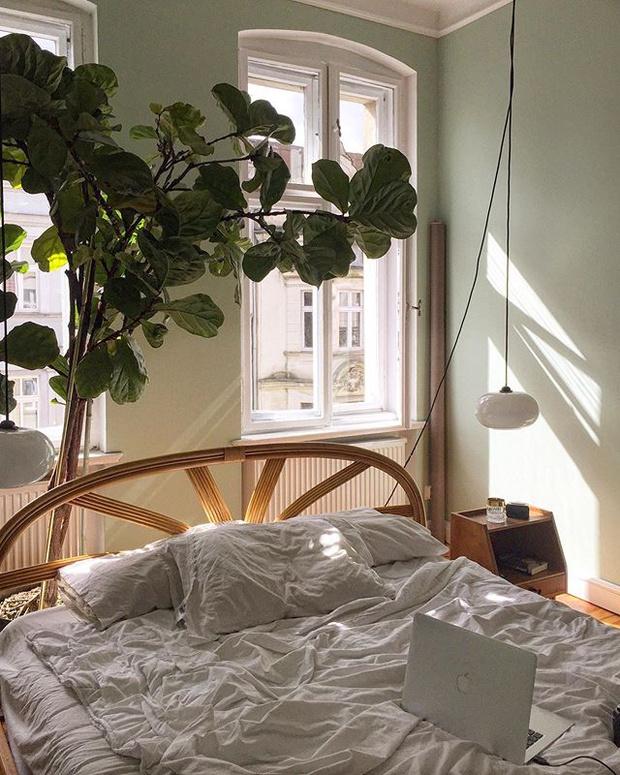 Атмосферная квартира в старом доме в Познани (фото 17)