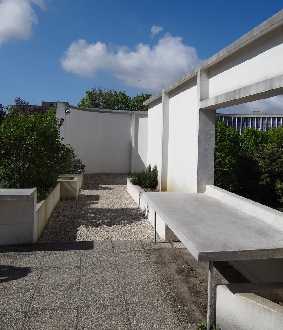 Модные сады в стиле mid-century modern (галерея 12, фото 2)