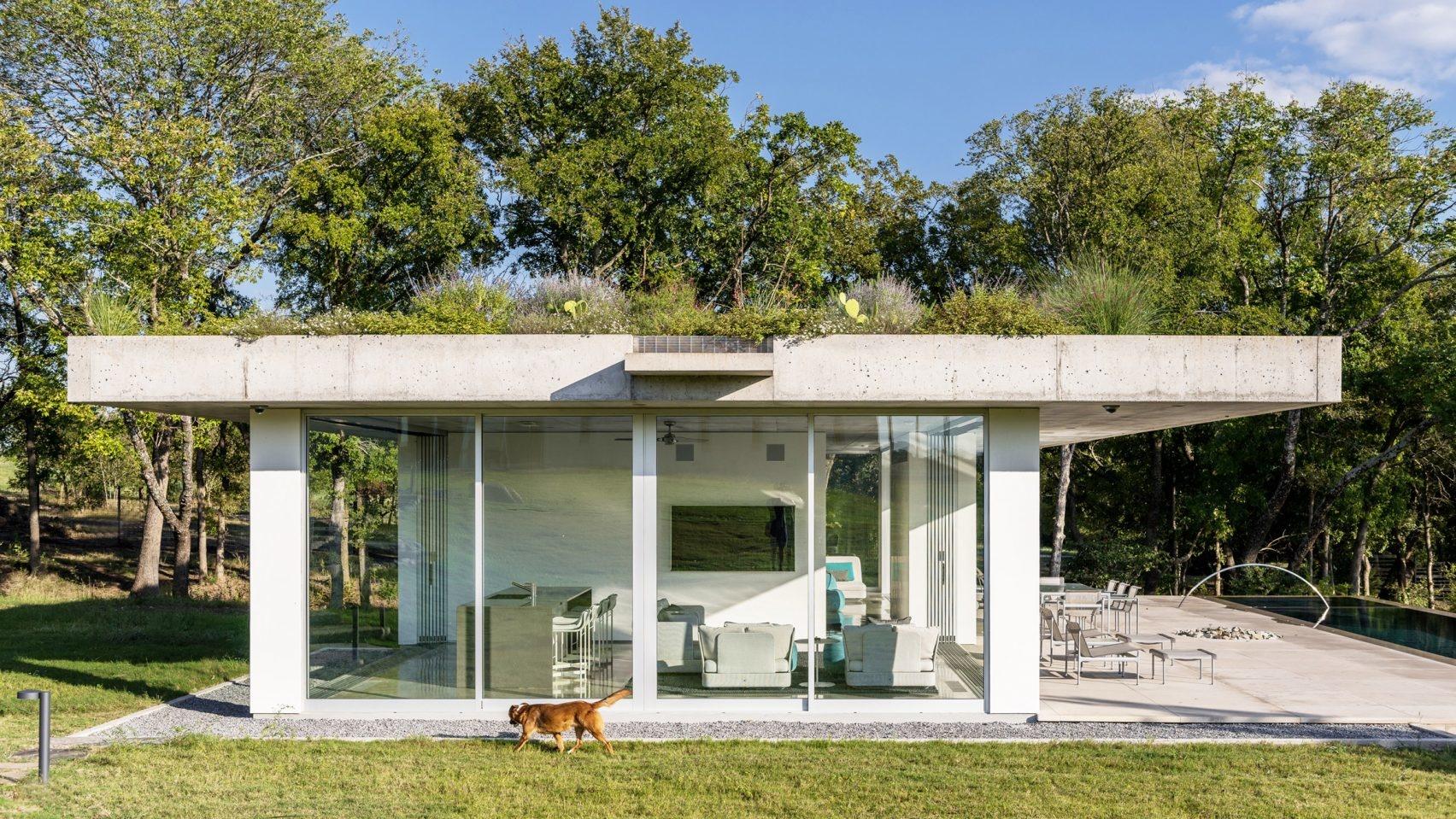 Пятый фасад: зеленые крыши (галерея 11, фото 2)
