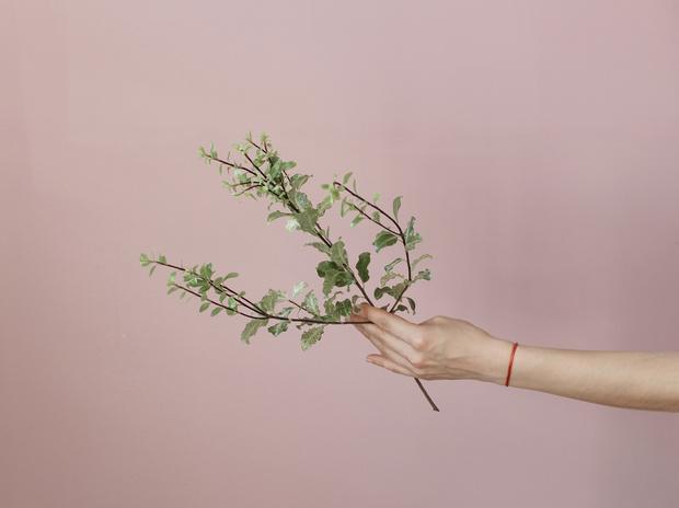 Мастер-класс: осенний букет из диких цветов (фото 3)
