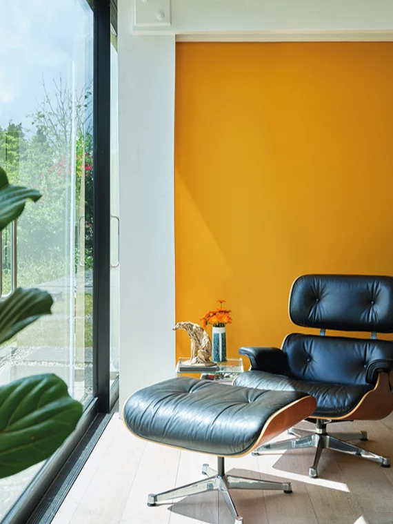 Красим стены: 10 неочевидных идей для маленьких квартир (фото 13)