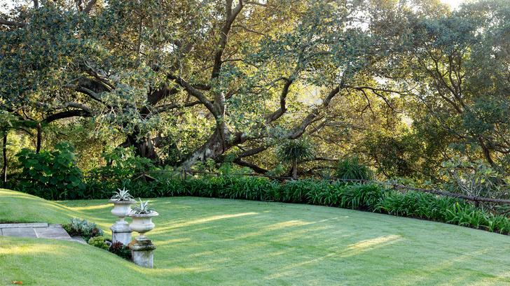 Дом и сад Бронте в центре Сиднея (фото 5)