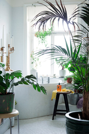 Стильная ванная комната: 5 простых советов (фото 20.2)