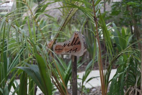 10 поводов отправиться на Мальдивы в отель Soneva Fushi | галерея [2] фото [7]