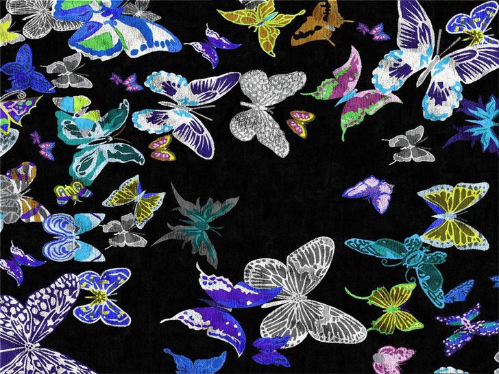 Эффект бабочки. Энтомологические мотивы в интерьере фото [12]