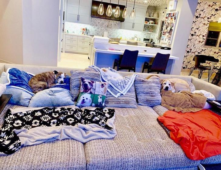 Актриса Кейли Куоко продает свой дом в Лос-Анджелесе (фото 19)
