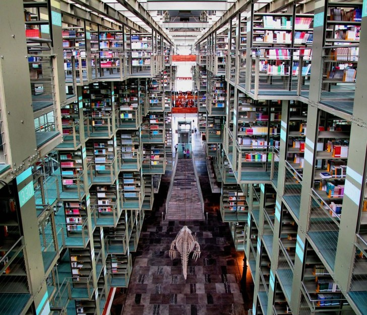 Самые потрясающие библиотеки мира (фото 68)