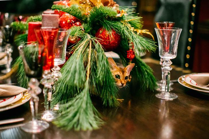Елки зеленые! Актуальные идеи  новогоднего декора (фото 7)