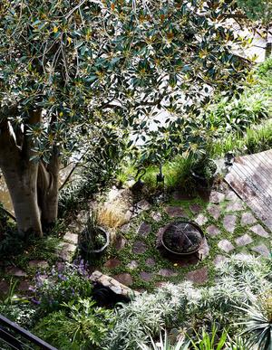 Эклектичный сад на берегу реки в Австралии (фото 11.2)