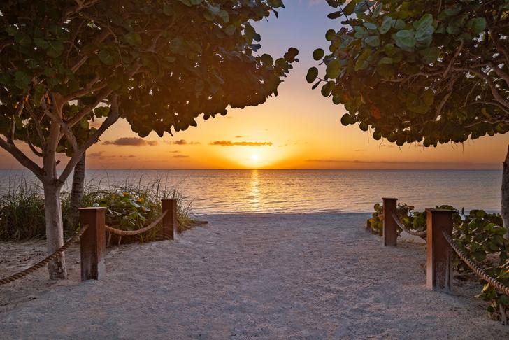 Брюс Уиллис продал свою виллу на островах Теркс и Кайкос (фото 9)