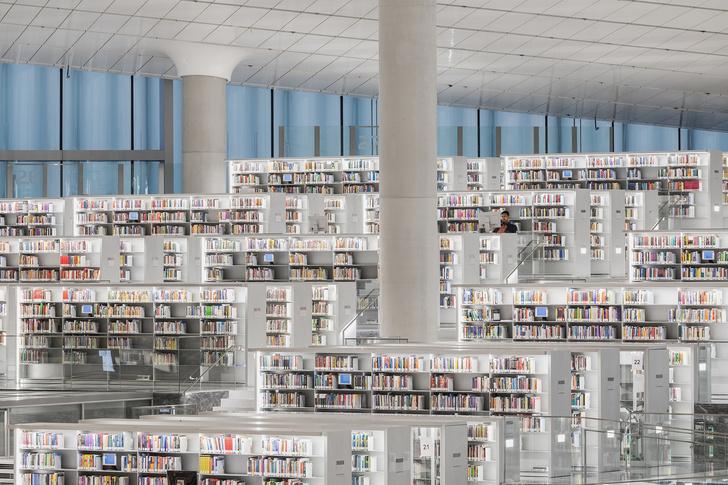 Библиотека по проекту Рема Колхаса (фото 2)