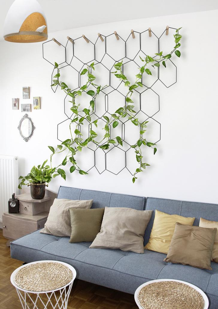 Практика: зеленые стены (фото 7)
