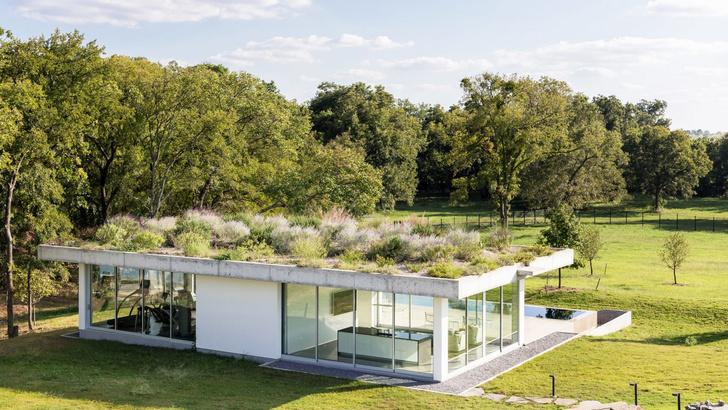 Пятый фасад: зеленые крыши (фото 9)