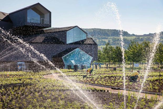 Сад по проекту Пита Удольфа появится на кампусе Vitra к 2021 году (фото 12)
