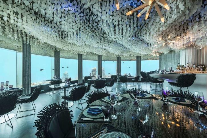 Полное погружение: топ-10 лучших подводных ресторанов (фото 16)