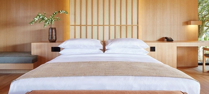 Oriental look: дизайнерские отели (фото 14)