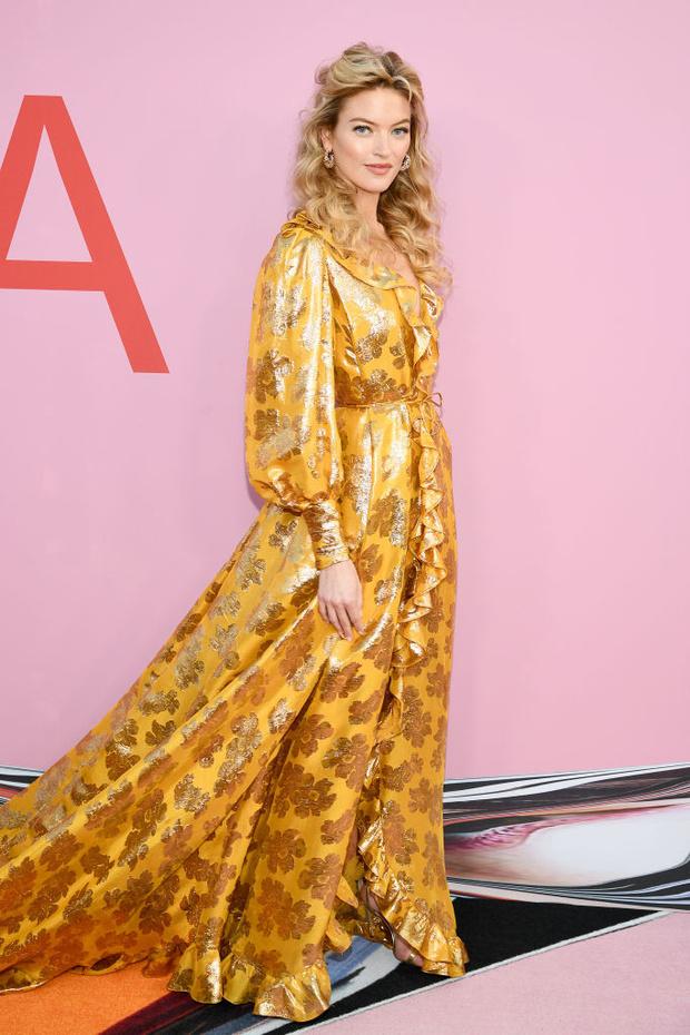 Сенсационно: 23 сексуальные супермодели на премии CFDA Fashion Awards (фото 18)