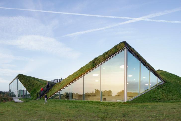 Пятый фасад: зеленые крыши (фото 5)