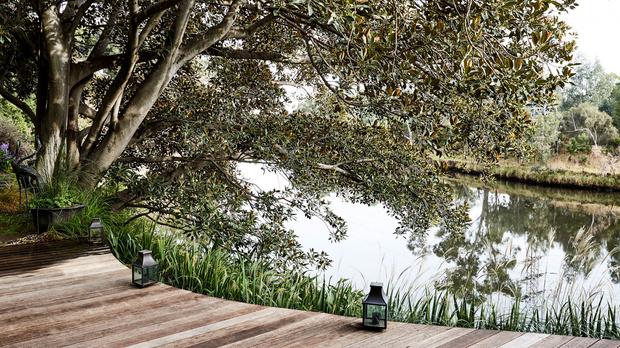 Эклектичный сад на берегу реки в Австралии (фото 0)