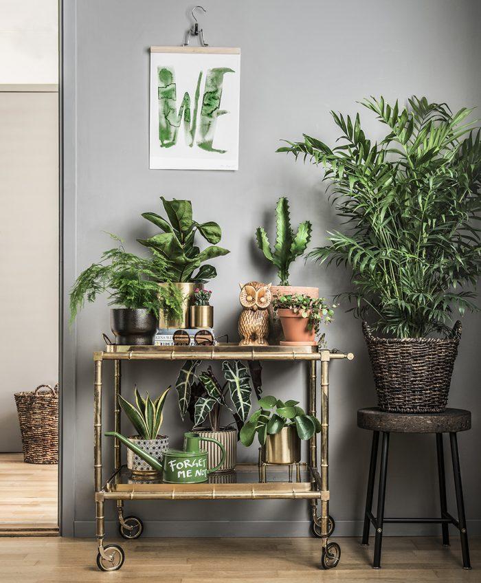 Как украсить дом к весне: 10 простых способов (фото 34)