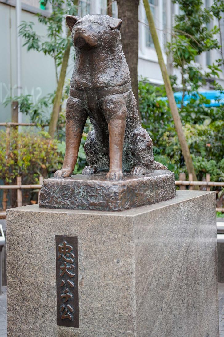 Токио (фото 7)