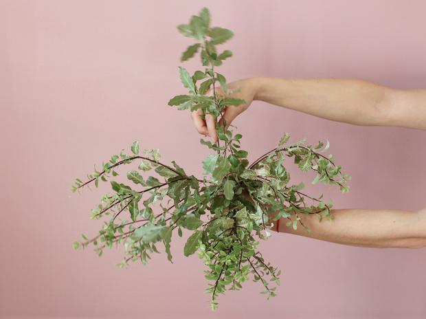 Мастер-класс: осенний букет из диких цветов (фото 5)