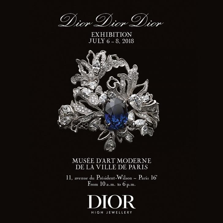 Выставка-ретроспектива Dior Haute Joaillerie (фото 4)