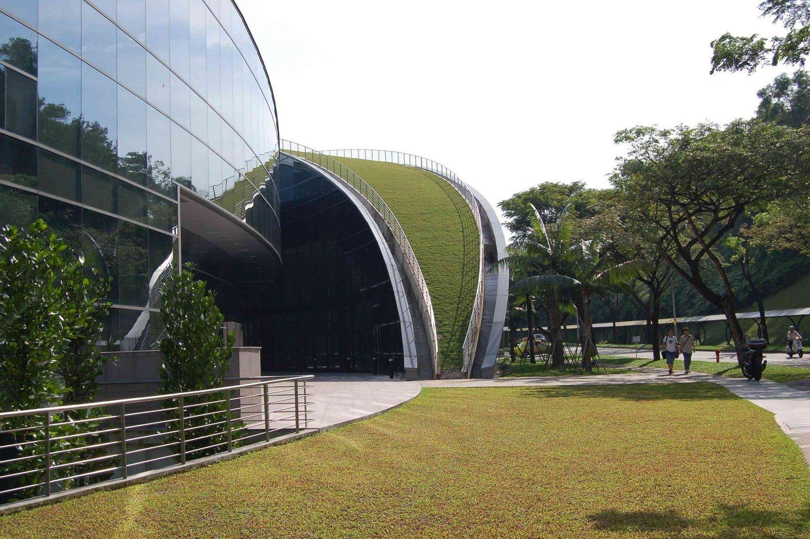 Пятый фасад: зеленые крыши (галерея 15, фото 2)