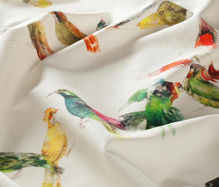 Это что за птица? Обои и предметы декора, которые окрыляют фото [4]