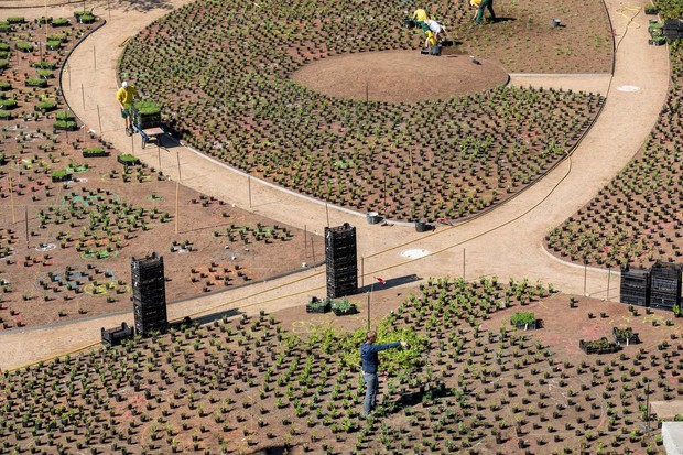 Сад Пита Удольфа на кампусе Vitra (фото 5)