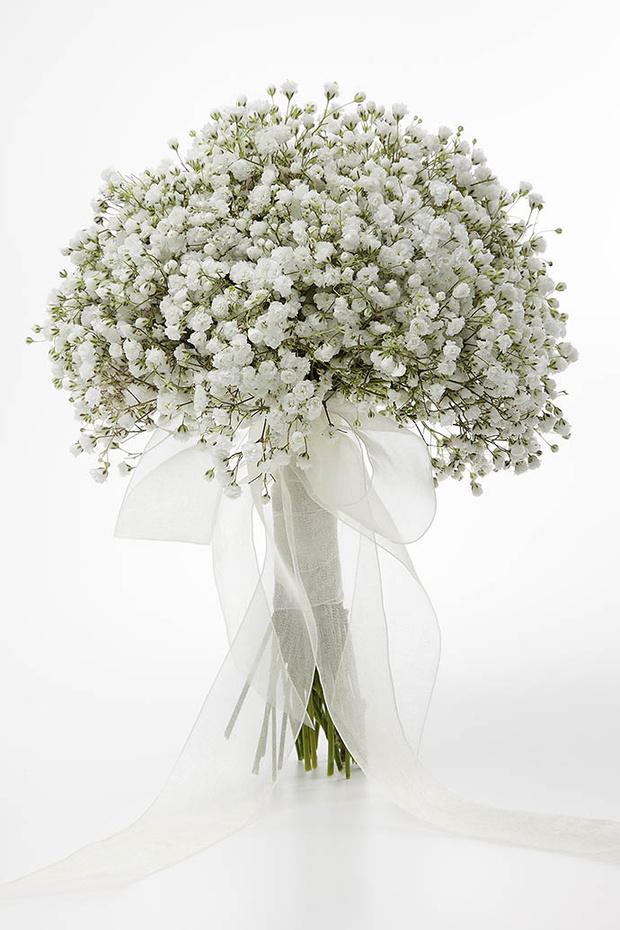 Мелкие белые цветы (Гипсофила Паникулата)