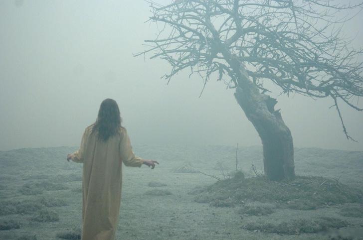 В ожидании «Суспирии»: 9 фильмов, которые вас напугают (фото 16)