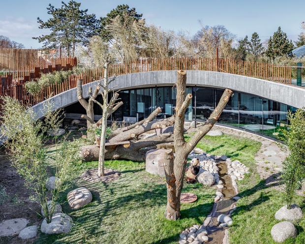 В зоопарке Копенгагена построили дом для панд (фото 8)