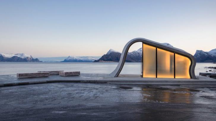 Органичная смотровая площадка в Норвегии (фото 1)