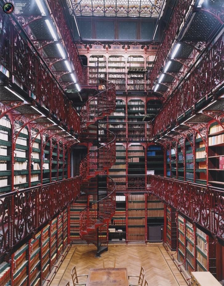 Самые потрясающие библиотеки мира (фото 19)