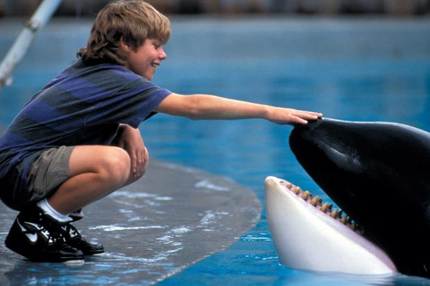 Самые трогательные фильмы о животных (фото 9)