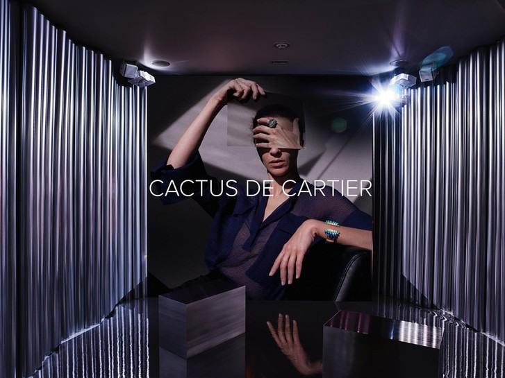 Остромодный вид: обновленная коллекция Cactus de Cartier (фото 5)