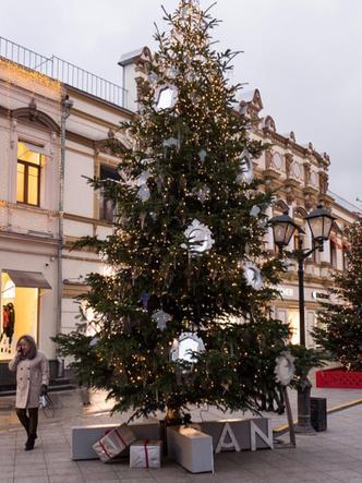 Выставка новогодних елей российских модельеров в Москве (фото 17)