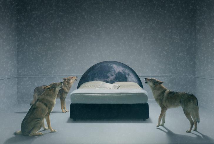 Шесть сказочных кроватей от Фабио Новембре (фото 6)