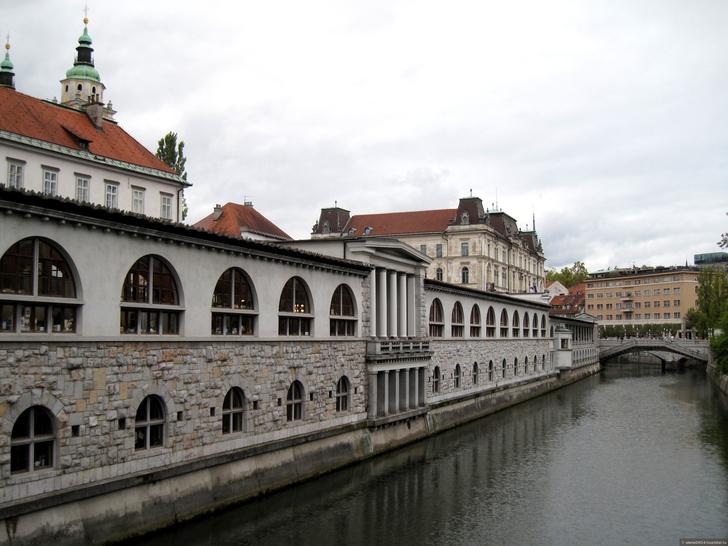Йоже Плечник: 10 ярких проектов словенского архитектора (фото 20)