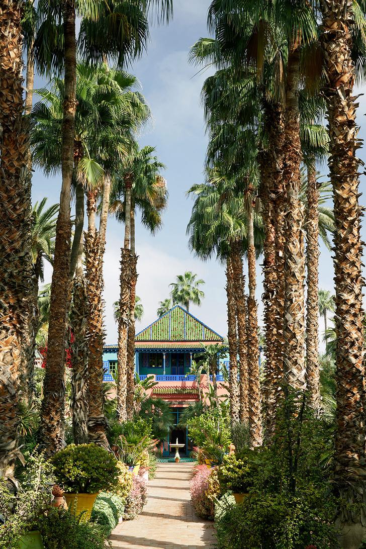 Оазис в пустыне: на вилле Ива Сен-Лорана в саду Мажорель (фото 3)