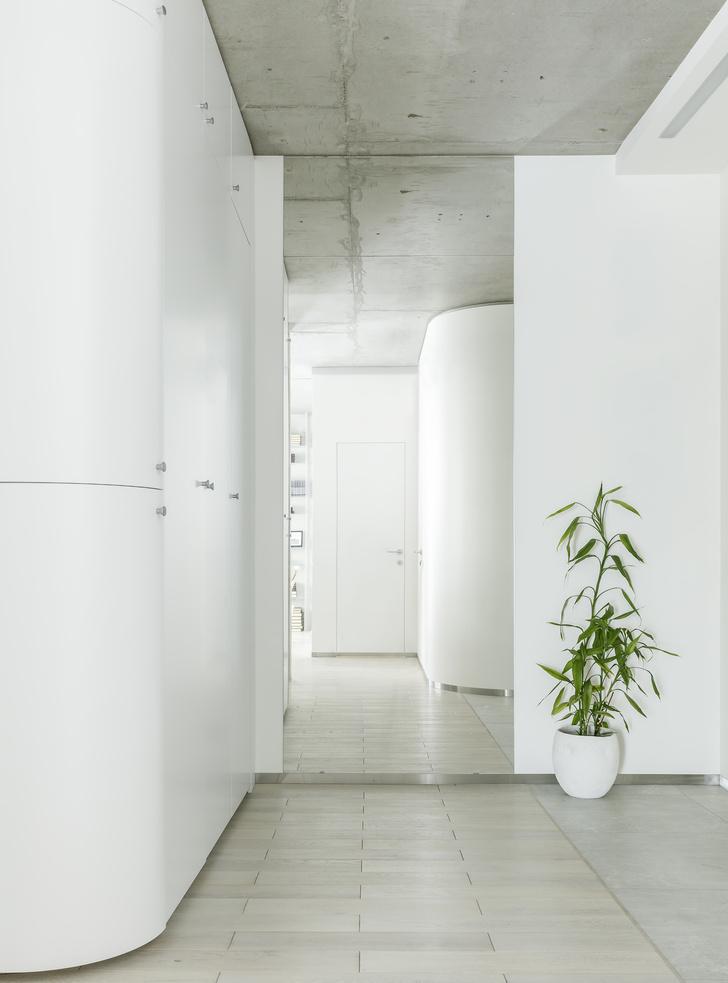 Чистый эксперимент: квартира 65 м² в Подмосковье (фото 2)