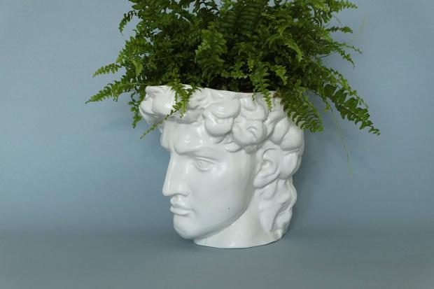 Модные кашпо и мебель для домашних растений (фото 5)