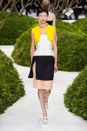 Показ Christian Dior коллекции сезона Весна-лето 2013 года Haute couture - www.elle.ru - Подиум - фото 477462