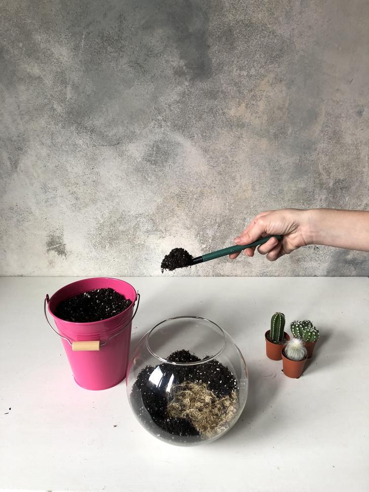 Как сделать зимний флорариум своими руками (фото 9)