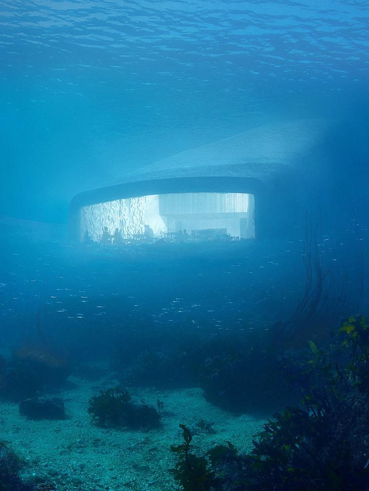 Подводный ресторан в Норвегии фото [5]