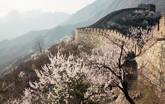 Путешествие: Китай (фото 0)