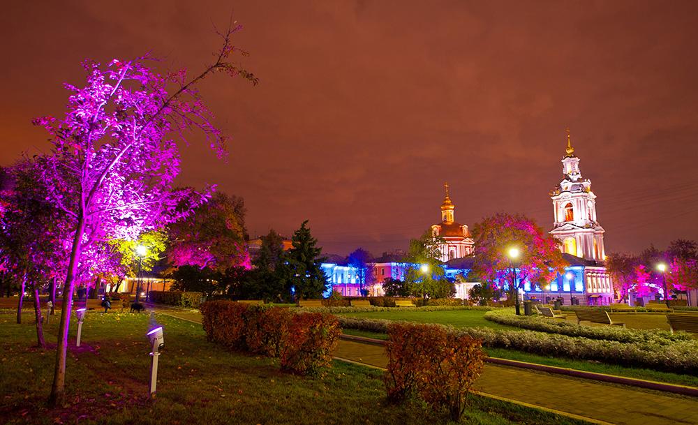 «Октябрь в розовом цвете» от Philips | галерея [1] фото [4]