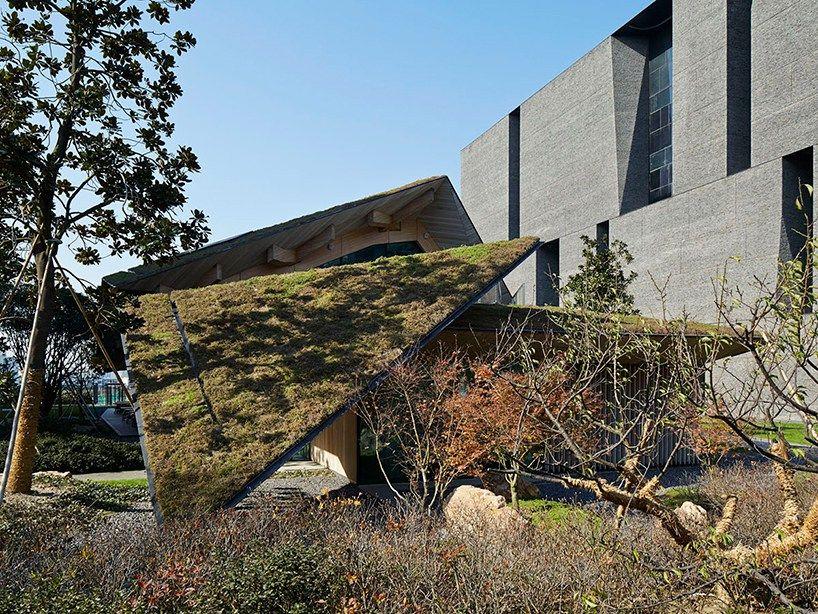 Пятый фасад: зеленые крыши (галерея 27, фото 1)