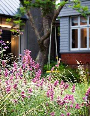 Современный дом и сад в пригороде Мельбурна (фото 6.2)